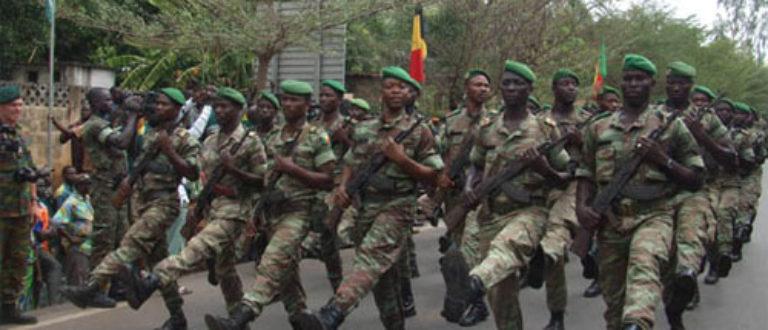 Article : Des soldats béninois au Mali