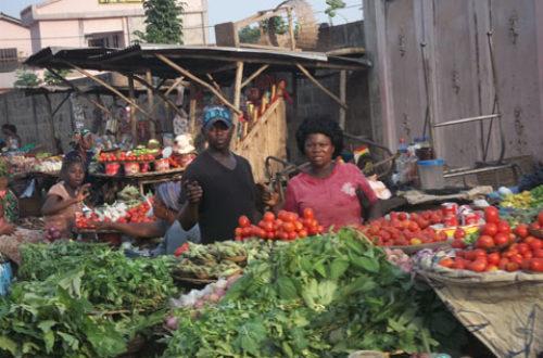 Article : Un marché de nuit dans l'informel